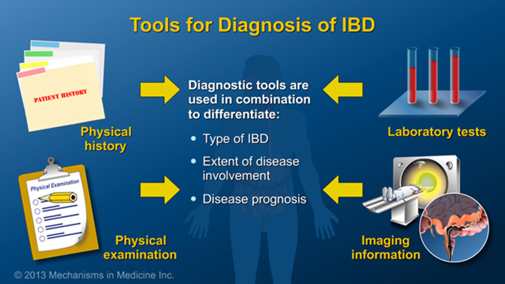 Tools for Diagnosis of IBD